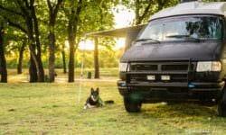 CampingAwningDog